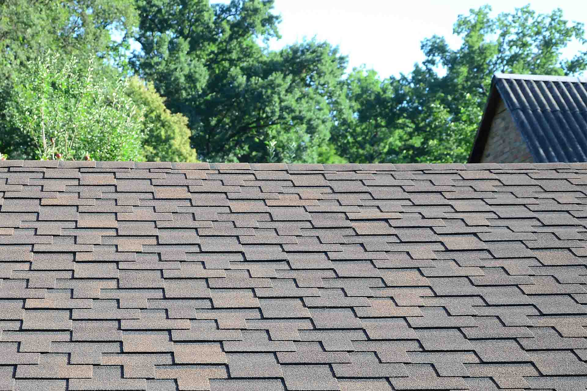 What Questions should I ask my Roofing Company?